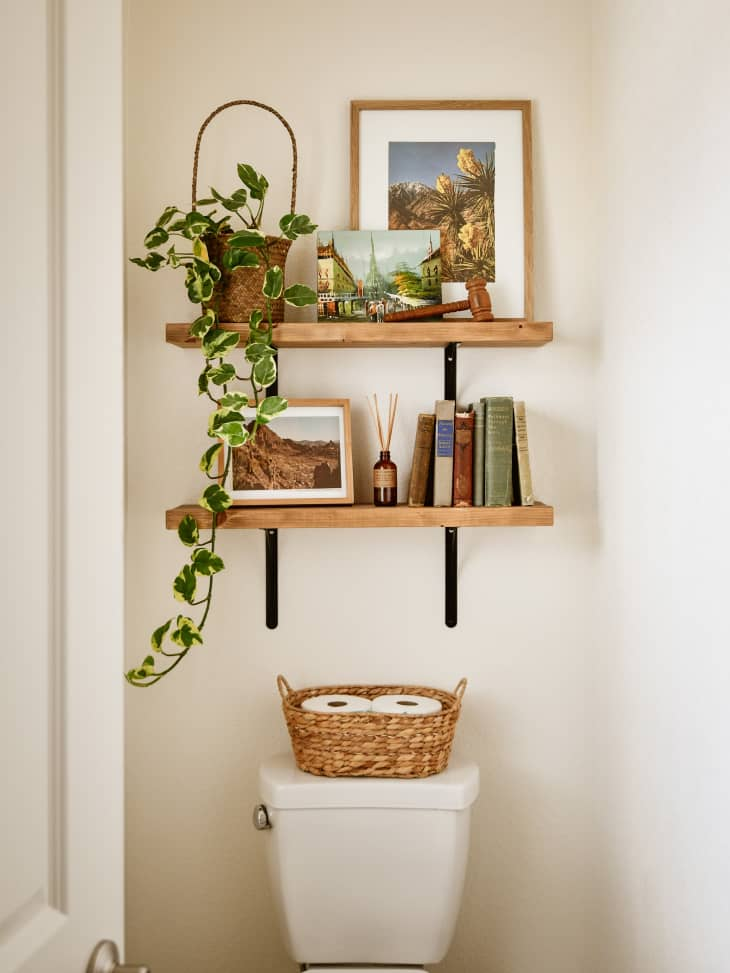 Shelves with books, plants, and frames above toilet