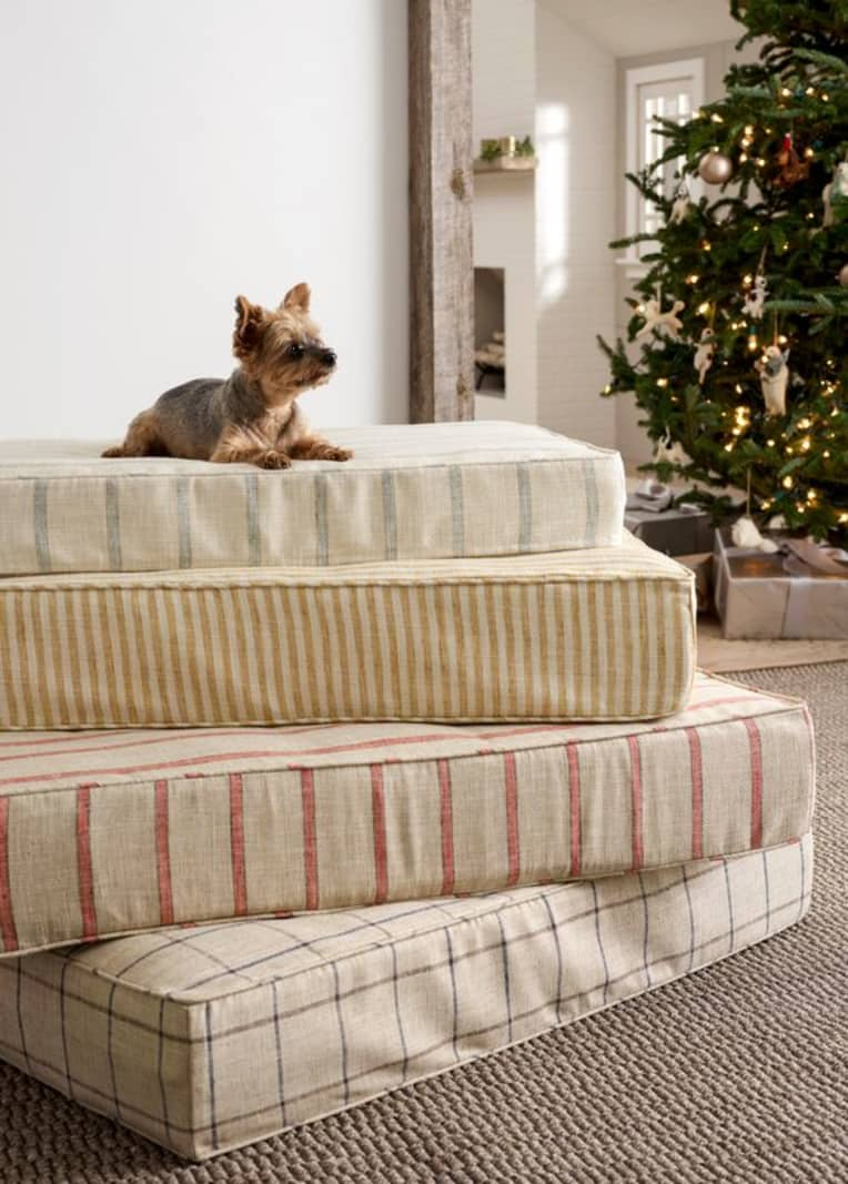 Dog resting on top of stack of striped cushions