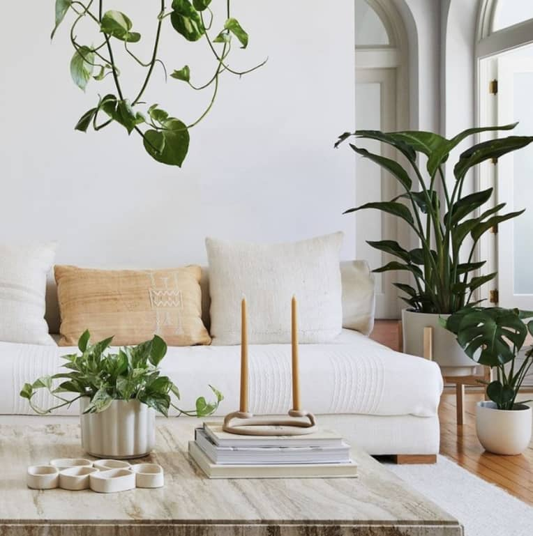 All white living room with plants from The Sill