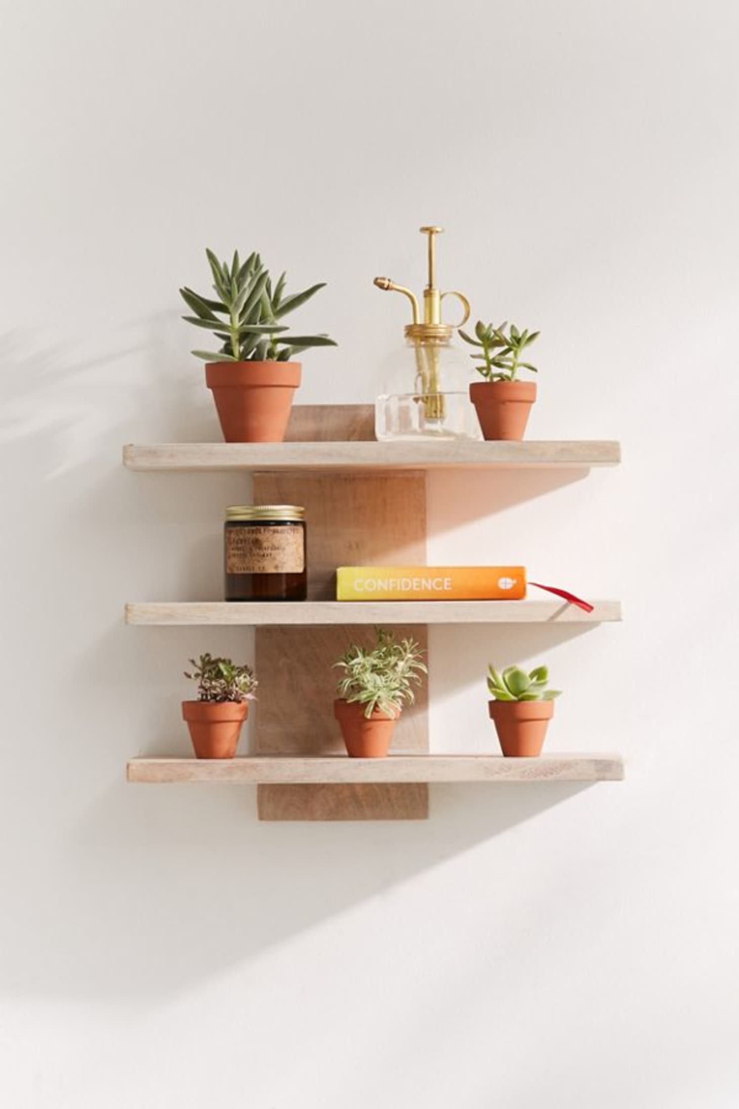6 ways to create a plant wall in a rental