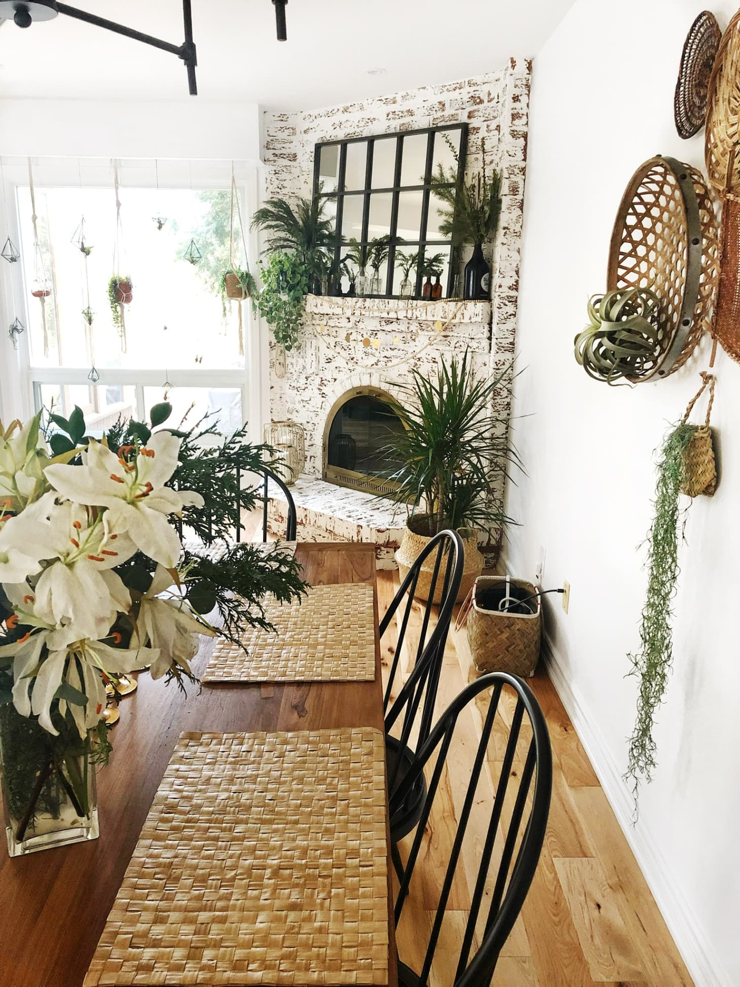 theKwendyHome Bohemian Plant-Filled Home Photos | Apartment ... on plant identification and names, food and names, vegetables and names, greenhouse and names, animals and names, ornamental grasses and names, herbs and names, beans and names, flowers and names, roses and names, cactus and names, pets and names, types of orchids and names, weeds and names, tools and names, wildflowers and names, seeds and names, daylilies and names, clothing and names, furniture and names,