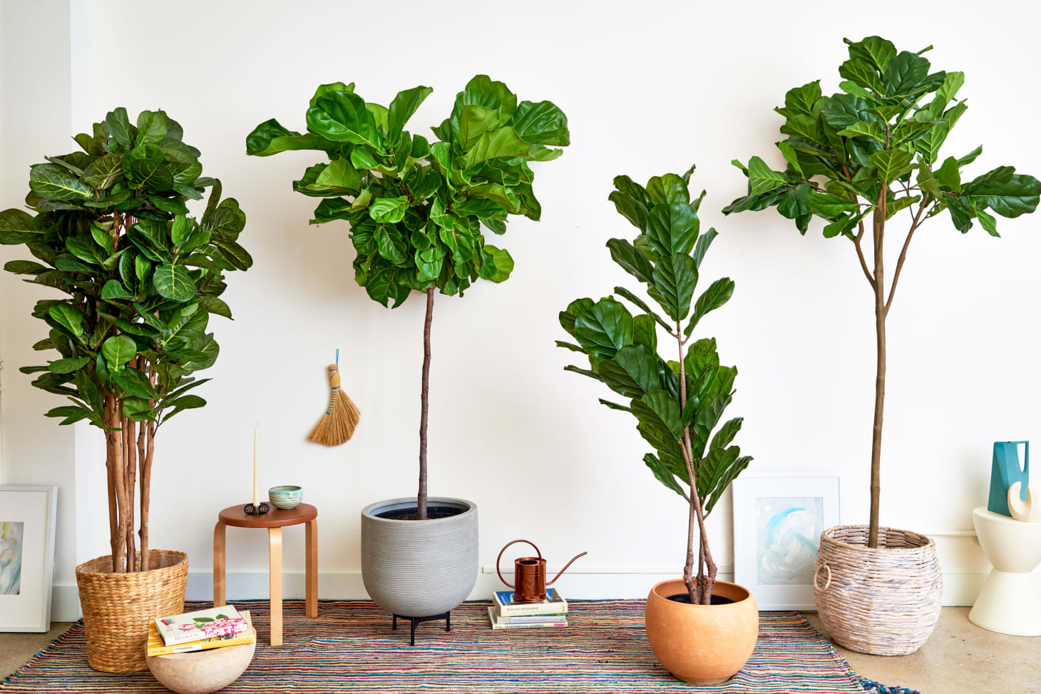 Faux Plants Fake Plants That Look Real Apartment Therapy