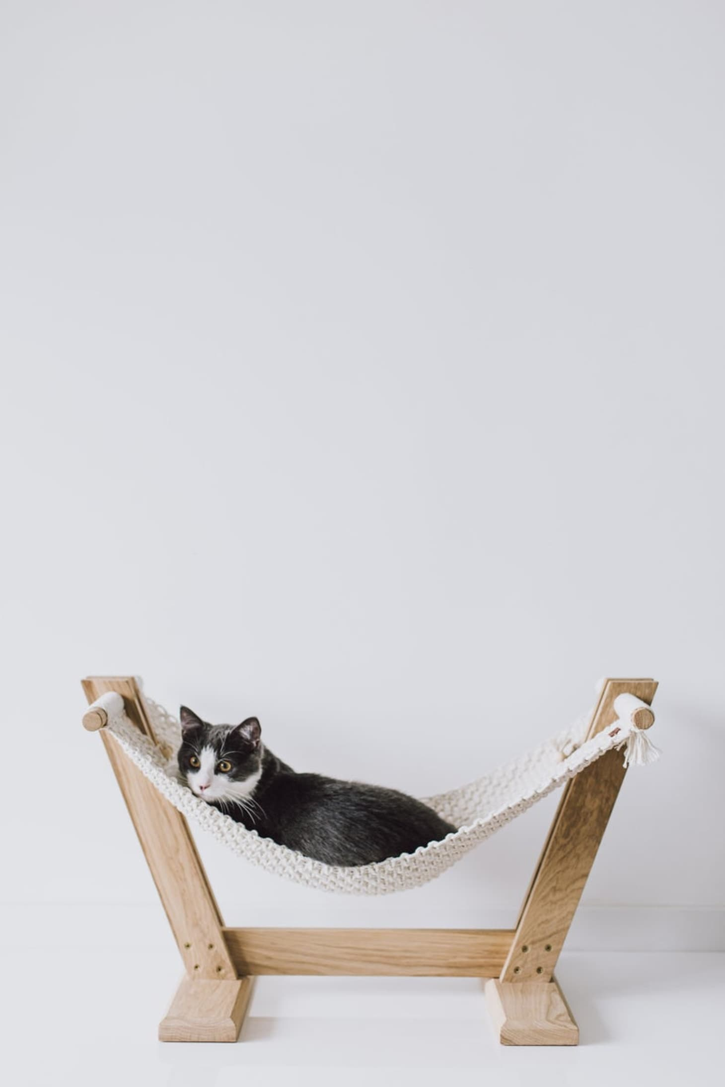 Macrame Cat Hammock Bed Etsy Maka Art Crafts Apartment Therapy