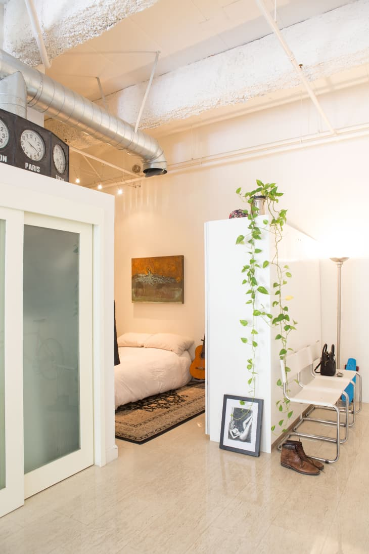 New Home Decor Plant Trend The Pothos Plant Apartment Therapy