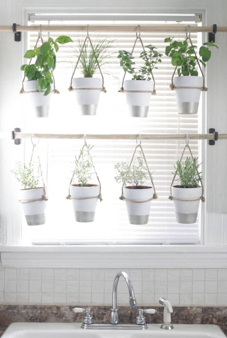 Creative Ways To Make Room For Plants In The Kitchen Apartment Therapy