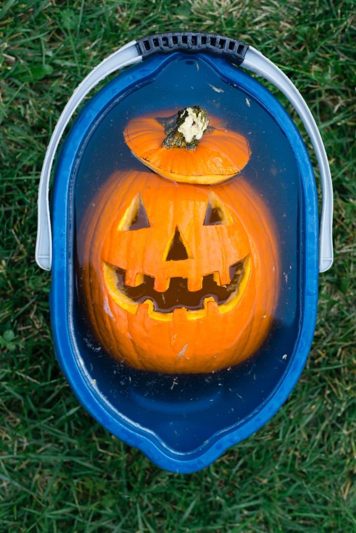 How Long Do Carved Pumpkins Last - Preserve Longer Tips ...