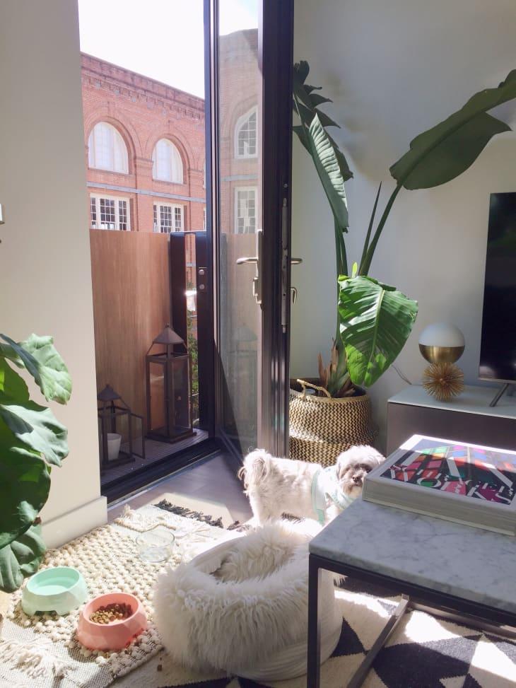 small onebedroom san francisco apartment tour  apartment