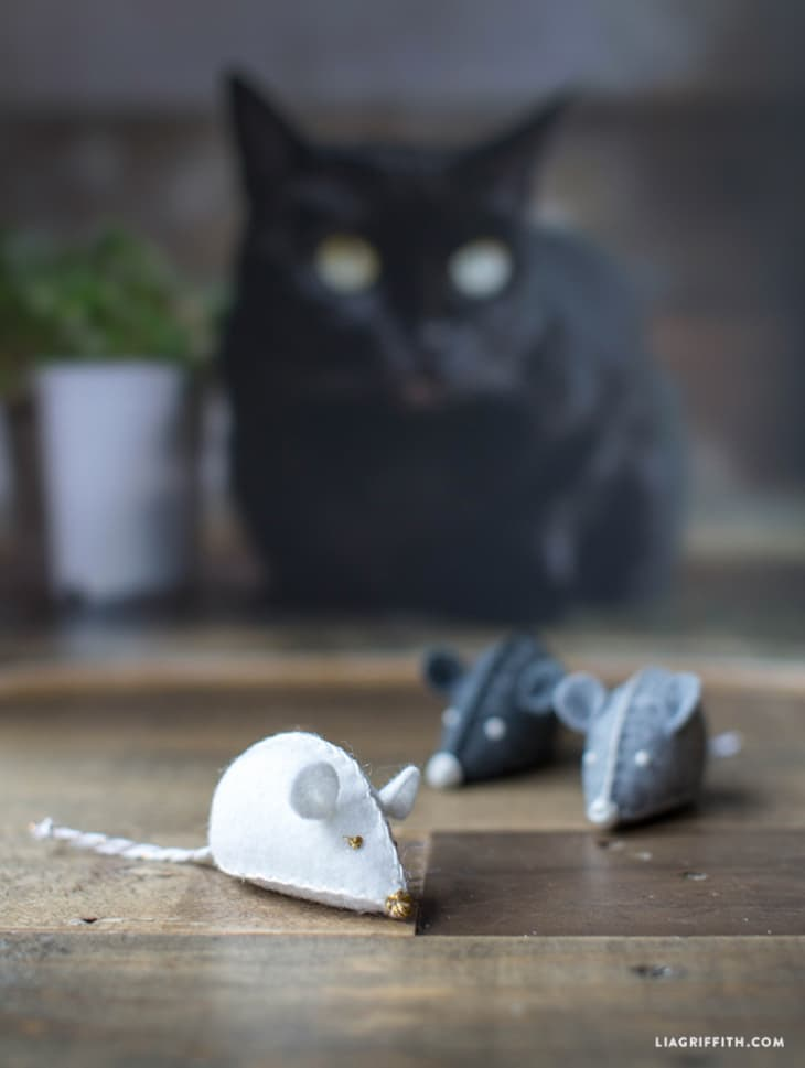 Pretty DIY Projects for Cat Owners | Apartment Therapy