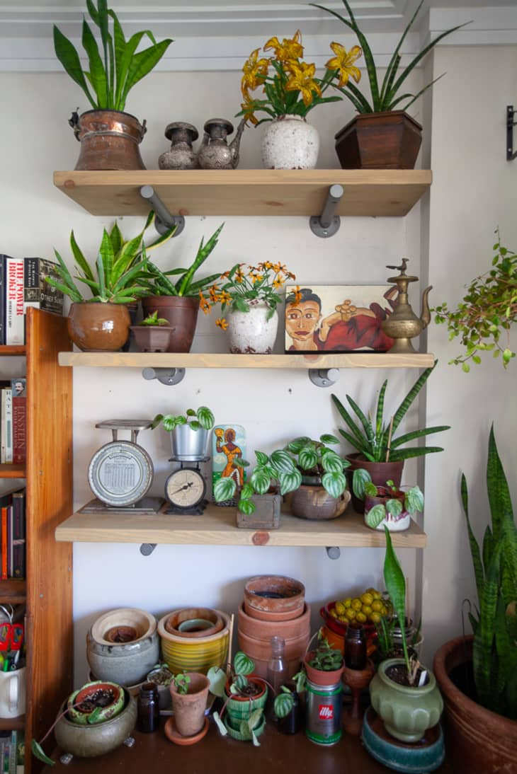 15 Indoor Garden Ideas How To Make A Garden Inside Your Home Apartment Therapy