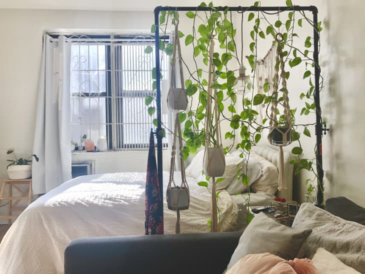 How To Display Houseplants 98 Of Our Favorite Plant Display Ideas Apartment Therapy