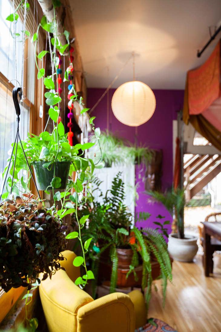 Afro Bohemian Decor Inspiration New Jersey Loft Tour Apartment Therapy