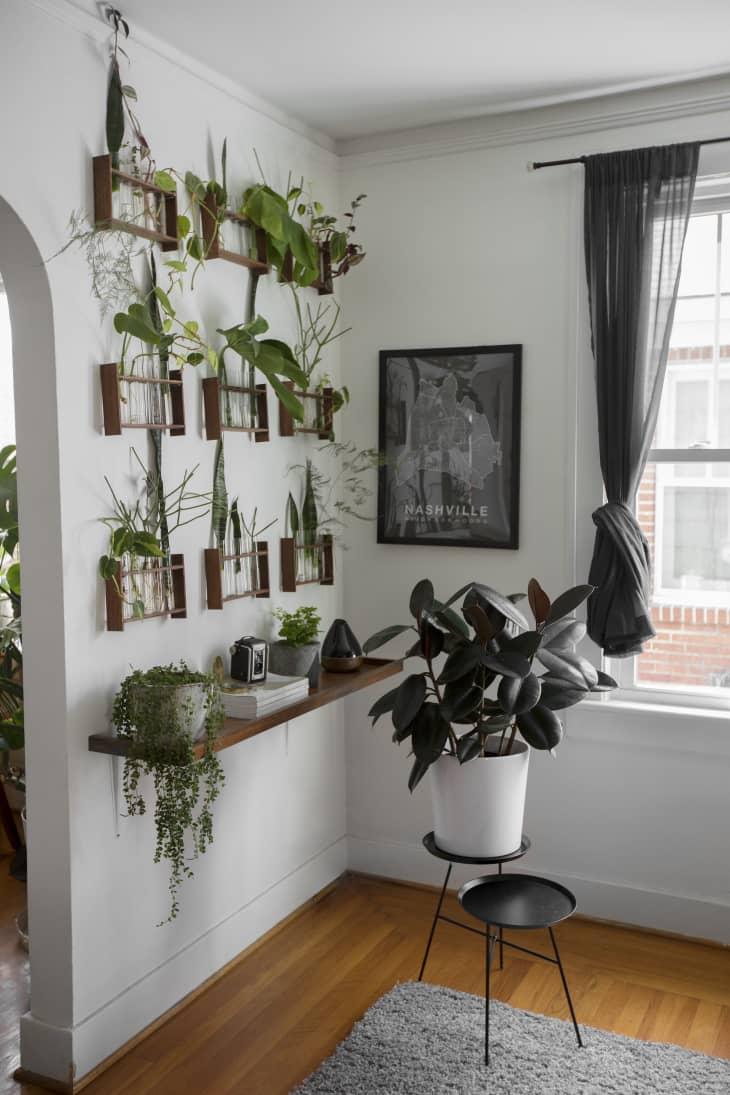 15 Indoor Garden Ideas - How to Make a Garden Inside Your ...