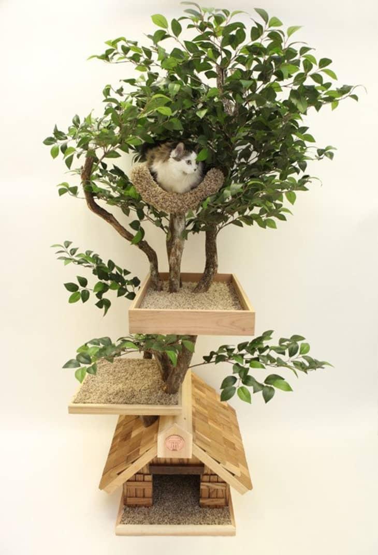 Product Image: Adult Cat Tree Medium