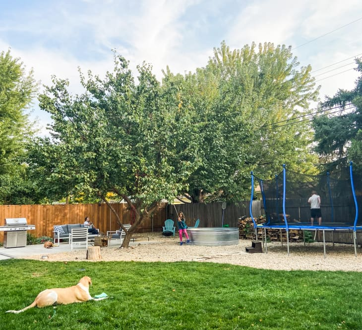 Family outdoors with pool and trampoline