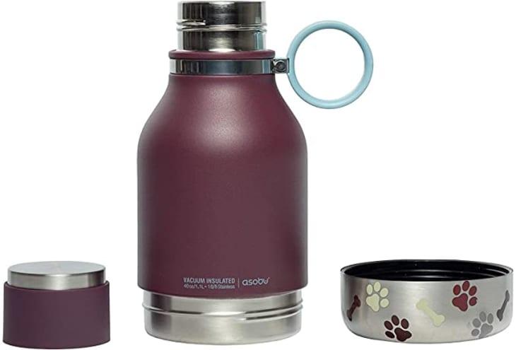 产品形象:Asobu狗宠物碗连接不锈钢绝缘旅行水瓶
