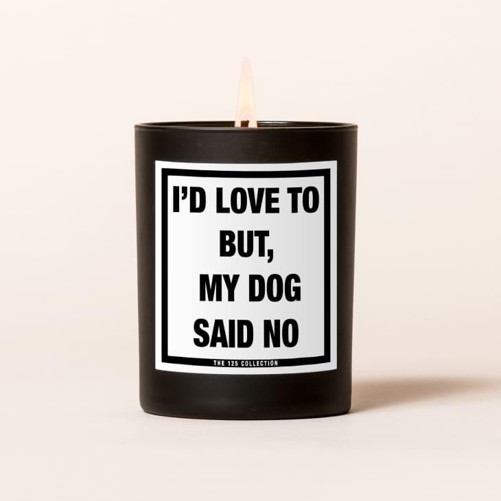 """产品图片:""""我很乐意,但我的狗说不""""蜡烛"""