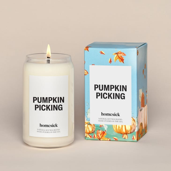 产品图片:南瓜采摘蜡烛
