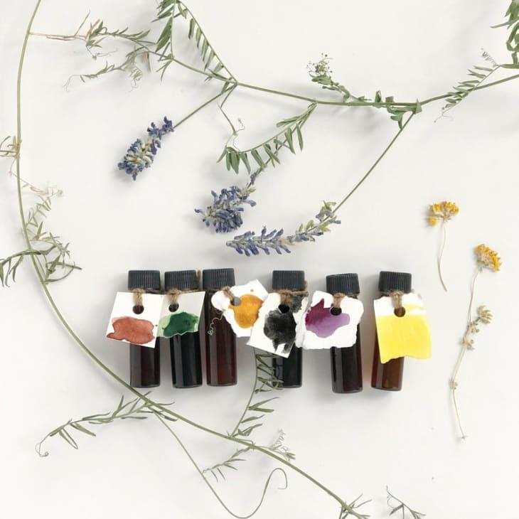 Product Image: Melissa Mary Jenkins Botanical Ink