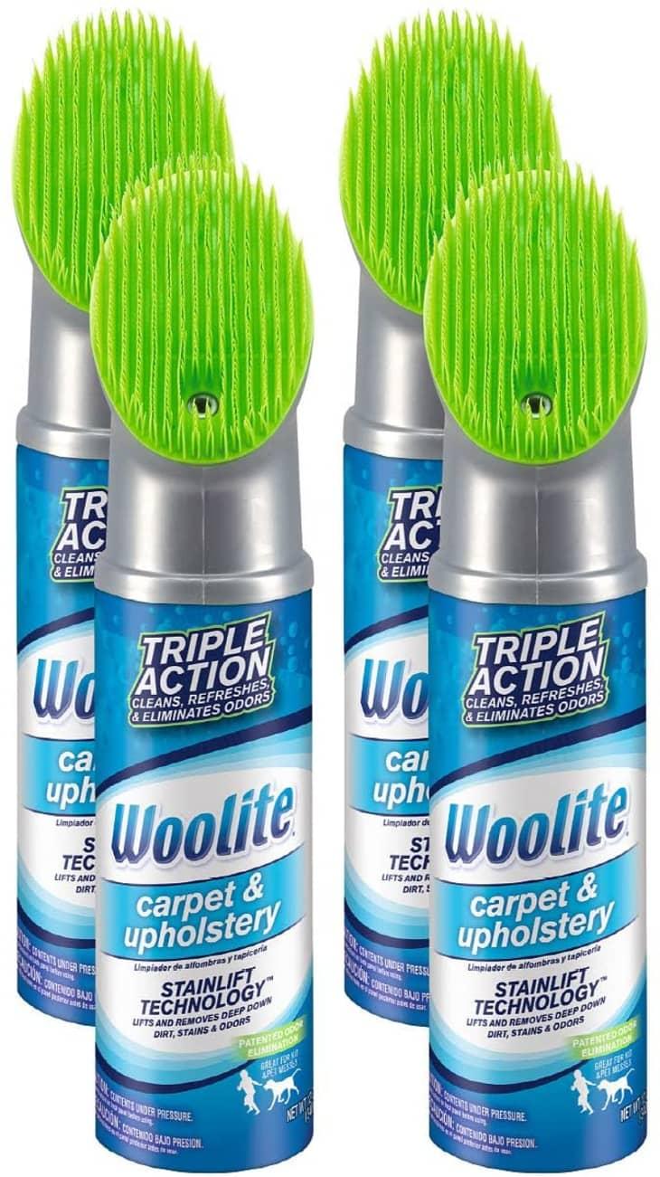 产品形象:羊毛地毯和室内装饰泡沫清洁剂,4包