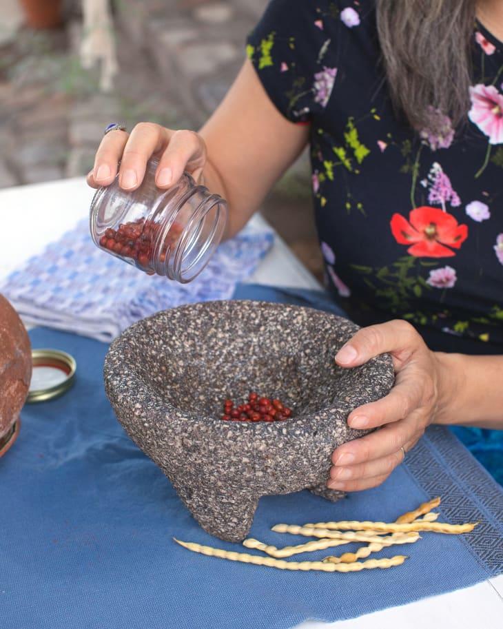 费利西亚在她的莫尔卡杰特里加了些种子