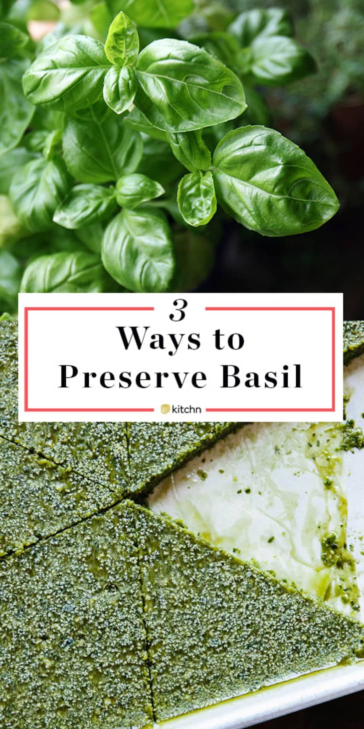 3 Tips For Preserving Fresh Basil All Year Long Kitchn