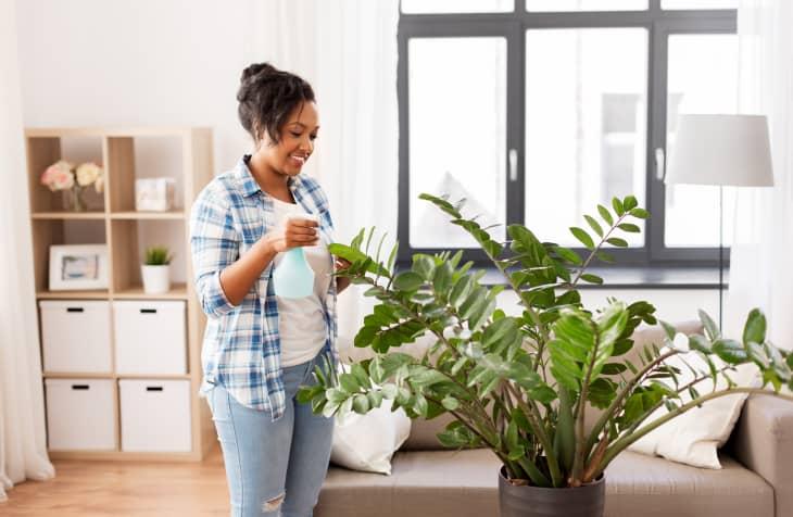 女浇水植物