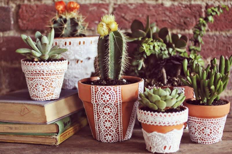 Mother S Day Diy Gift Ideas 10 Inspiring Succulent Cactus