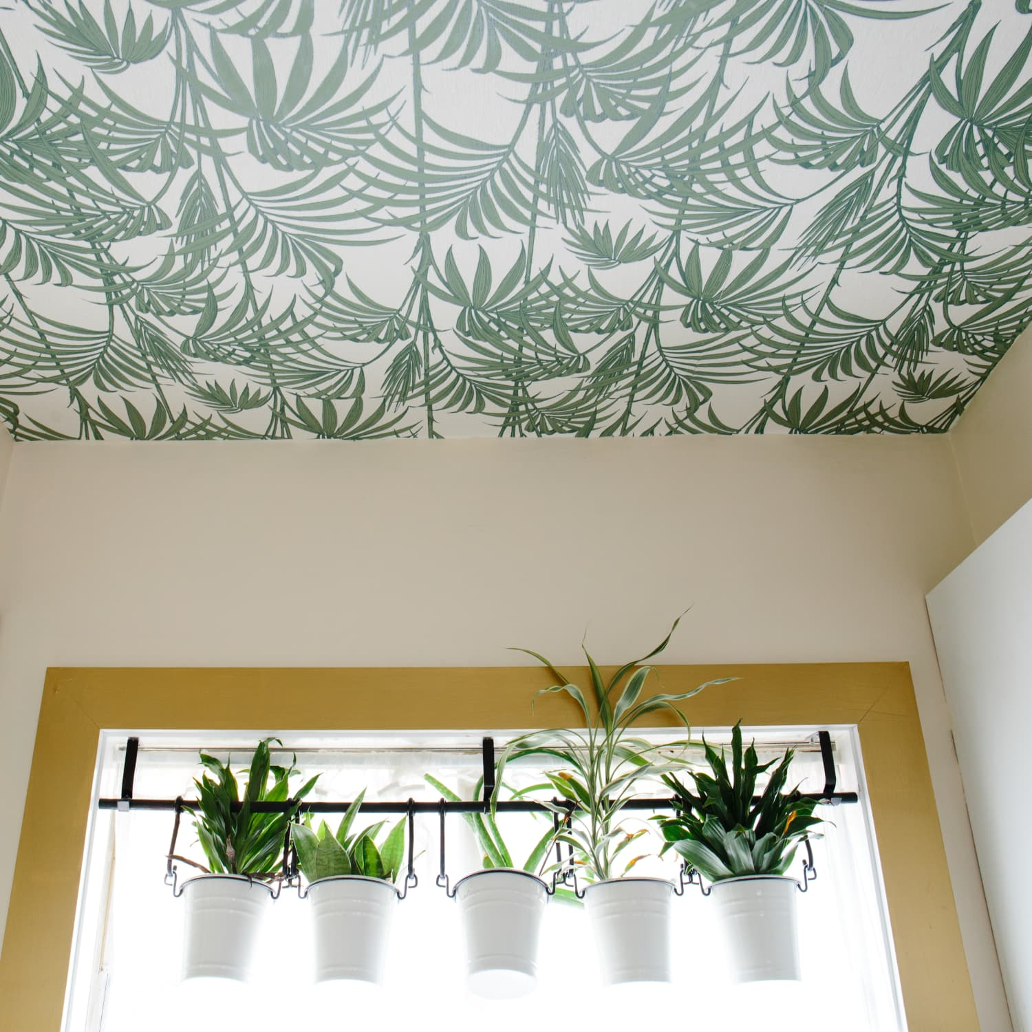 Image of: Drop Ceiling Ideas Apartment Therapy