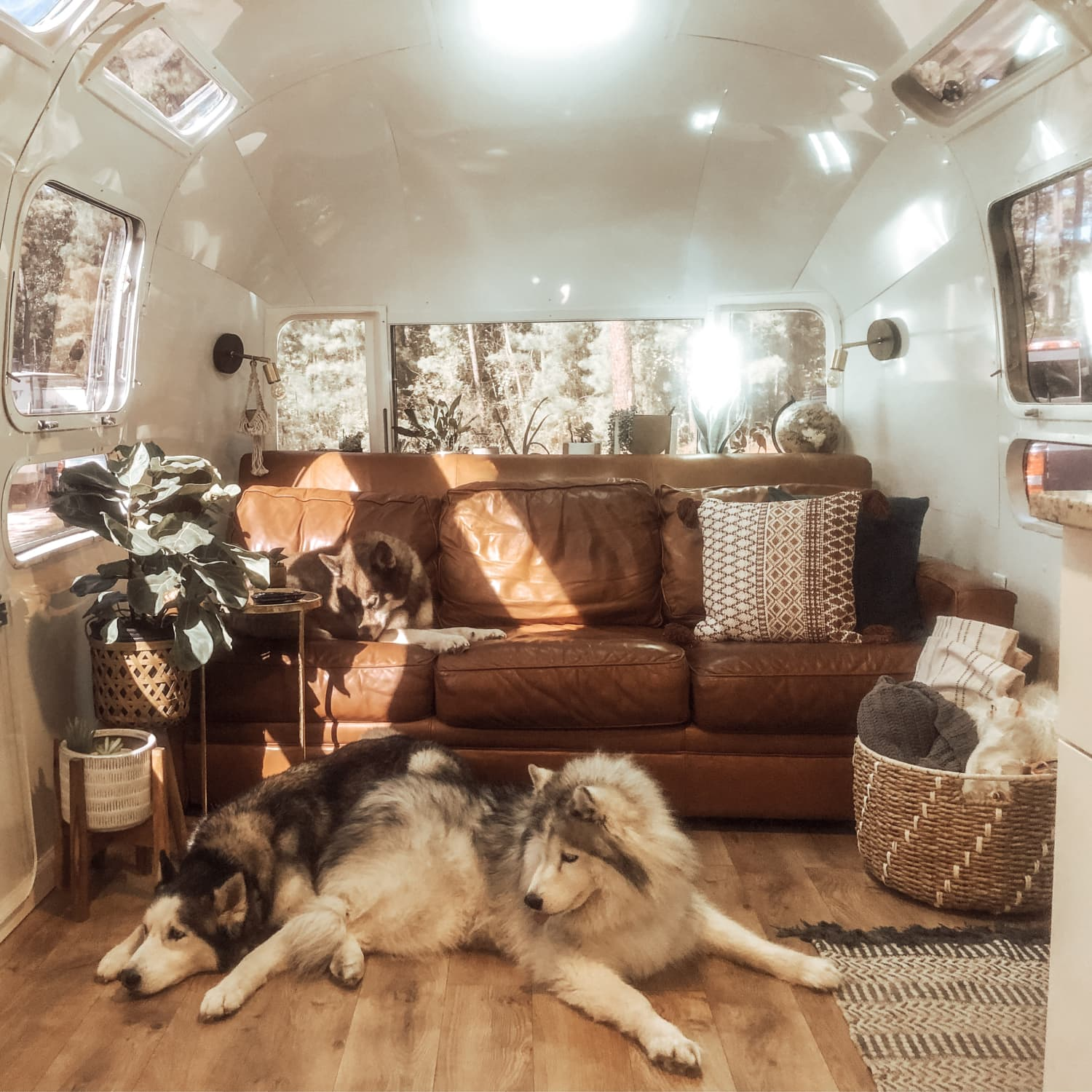 Stupendous 1972 Airstream Gut Renovation Tiny House Tour Apartment Creativecarmelina Interior Chair Design Creativecarmelinacom