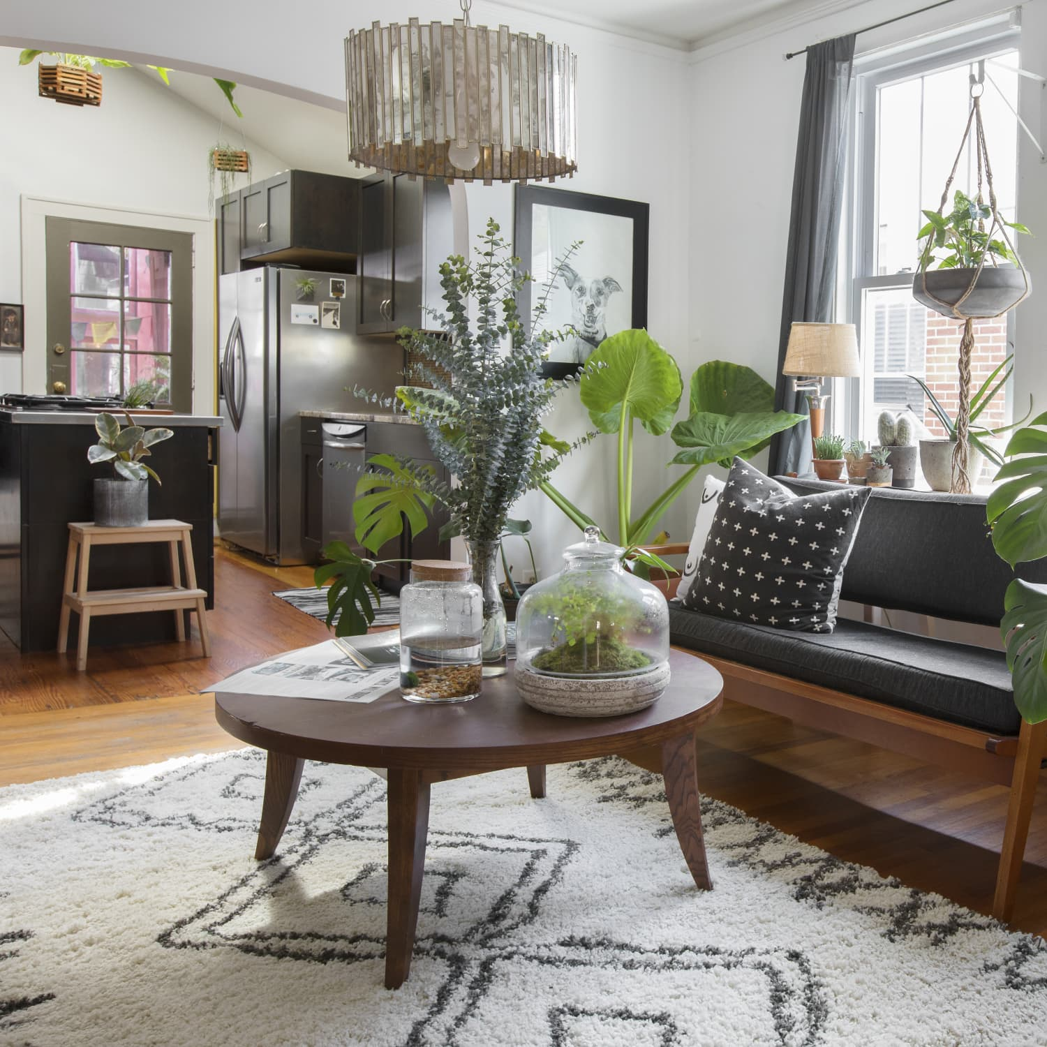 The Best Nature Inspired Living Room Trends   Apartment Therapy