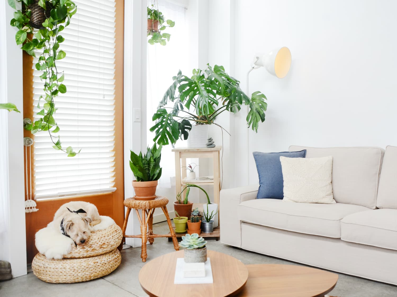 West Elm Henry Sofa Review Apartment Therapy