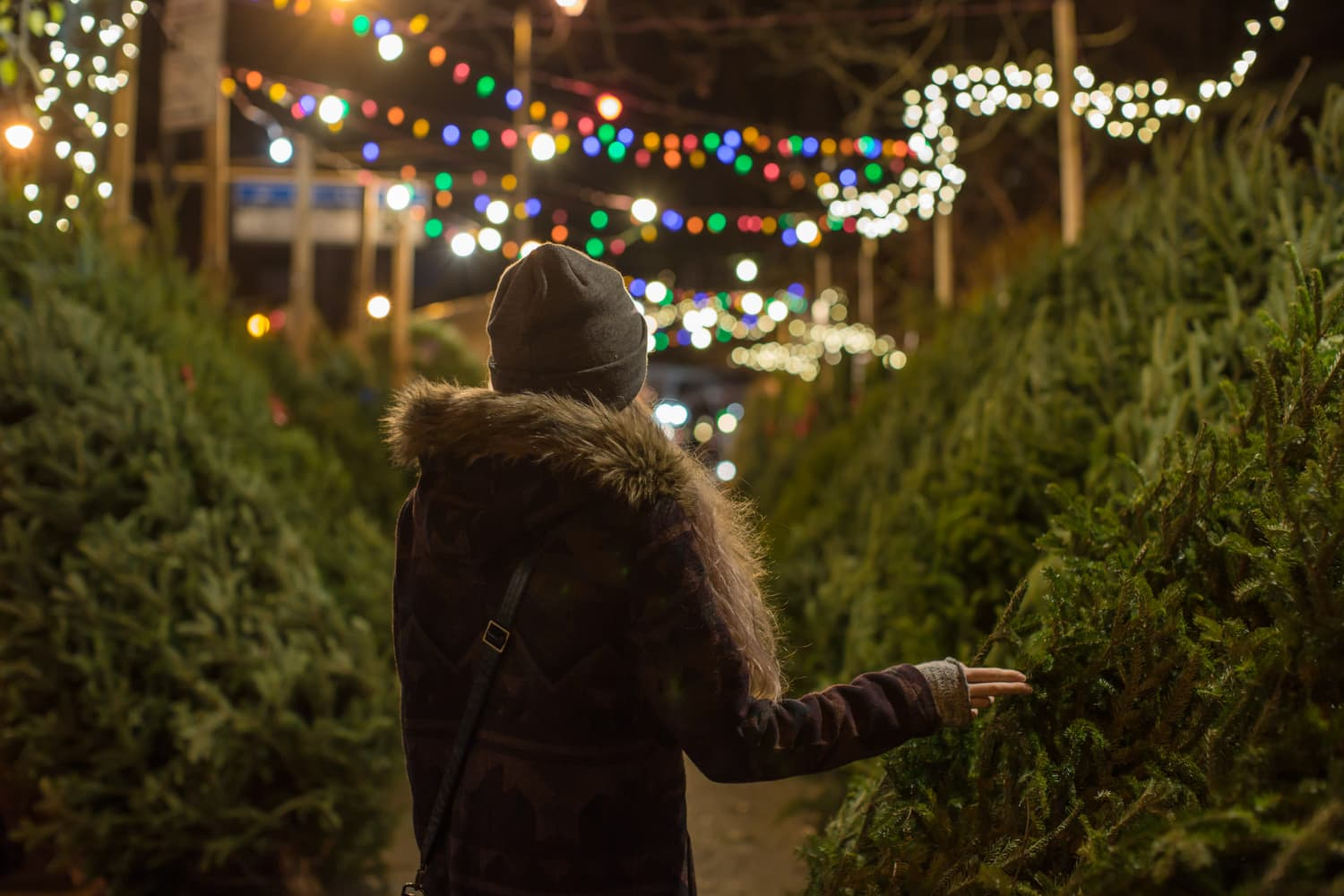 A Single Christmas Tree in New York City Can Cost As Much As $6,500