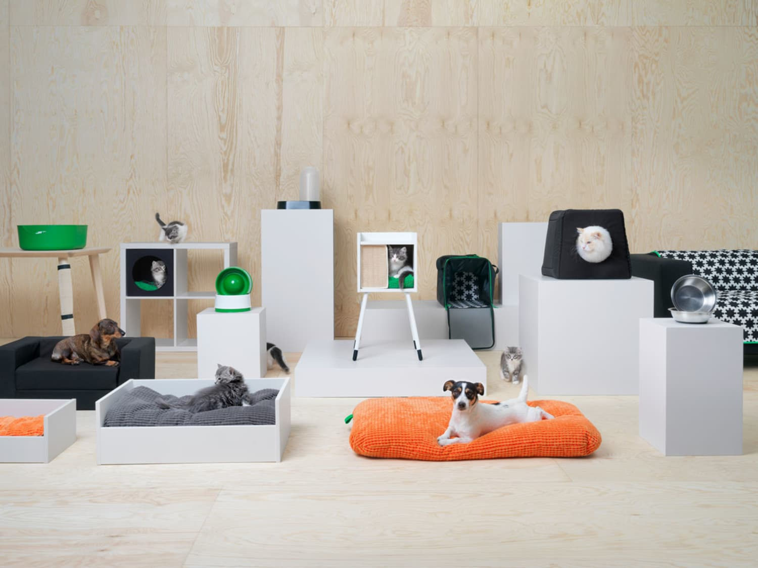 IKEA Has a New Collection for Pets, So Your Dog Can Have Its Own Mini Couch