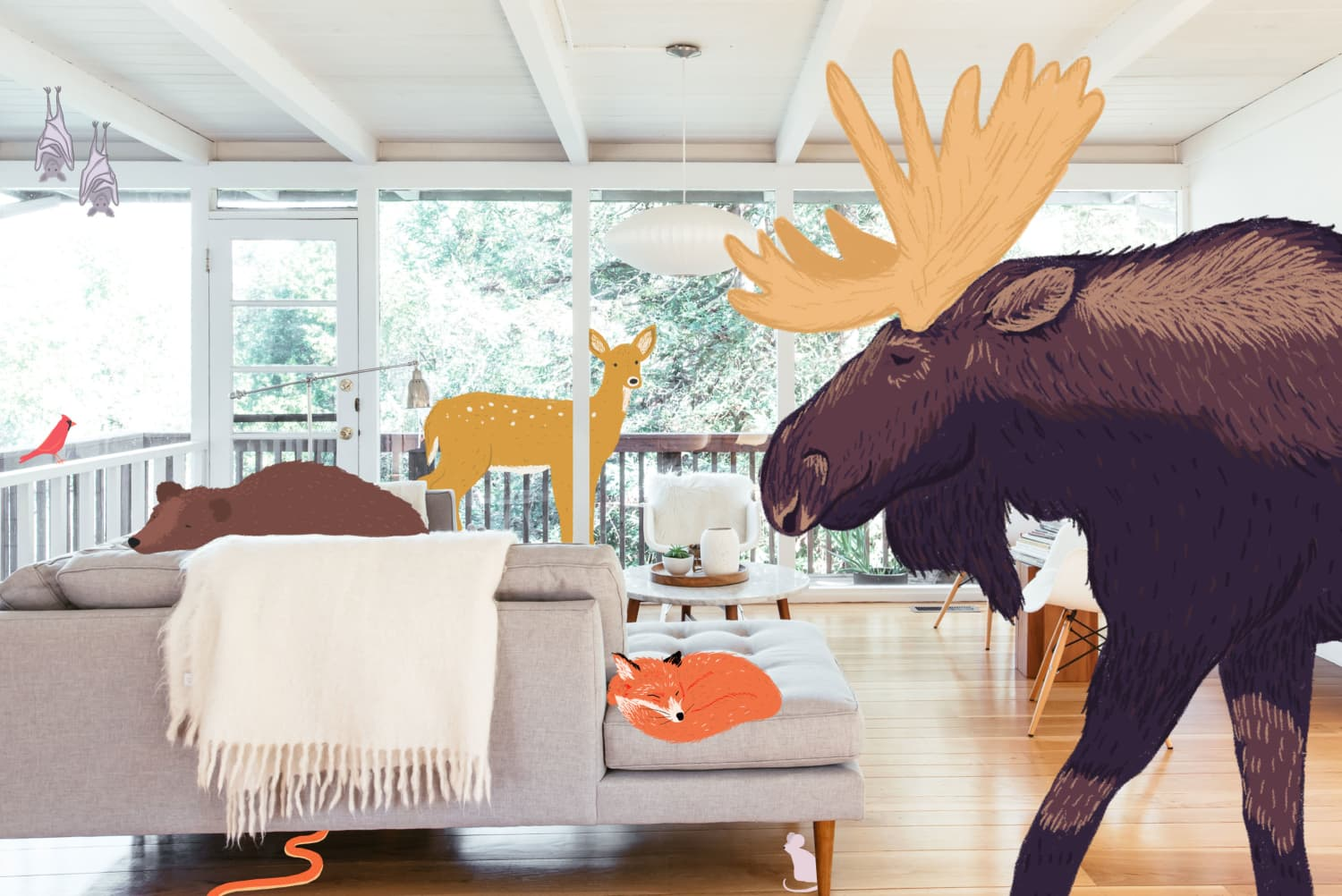 Bring Virtual Animals into Your Home With This Google Feature