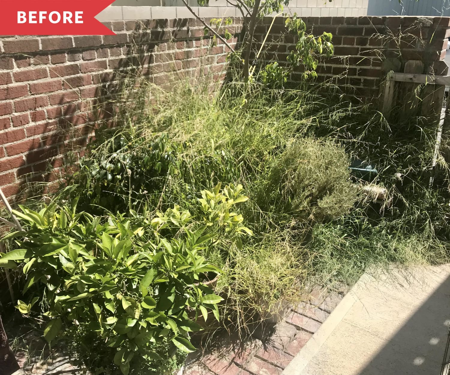 Before & After: This Weed-Infested Patio Got a $1,000 Makeover and Is Now a Relaxing Retreat