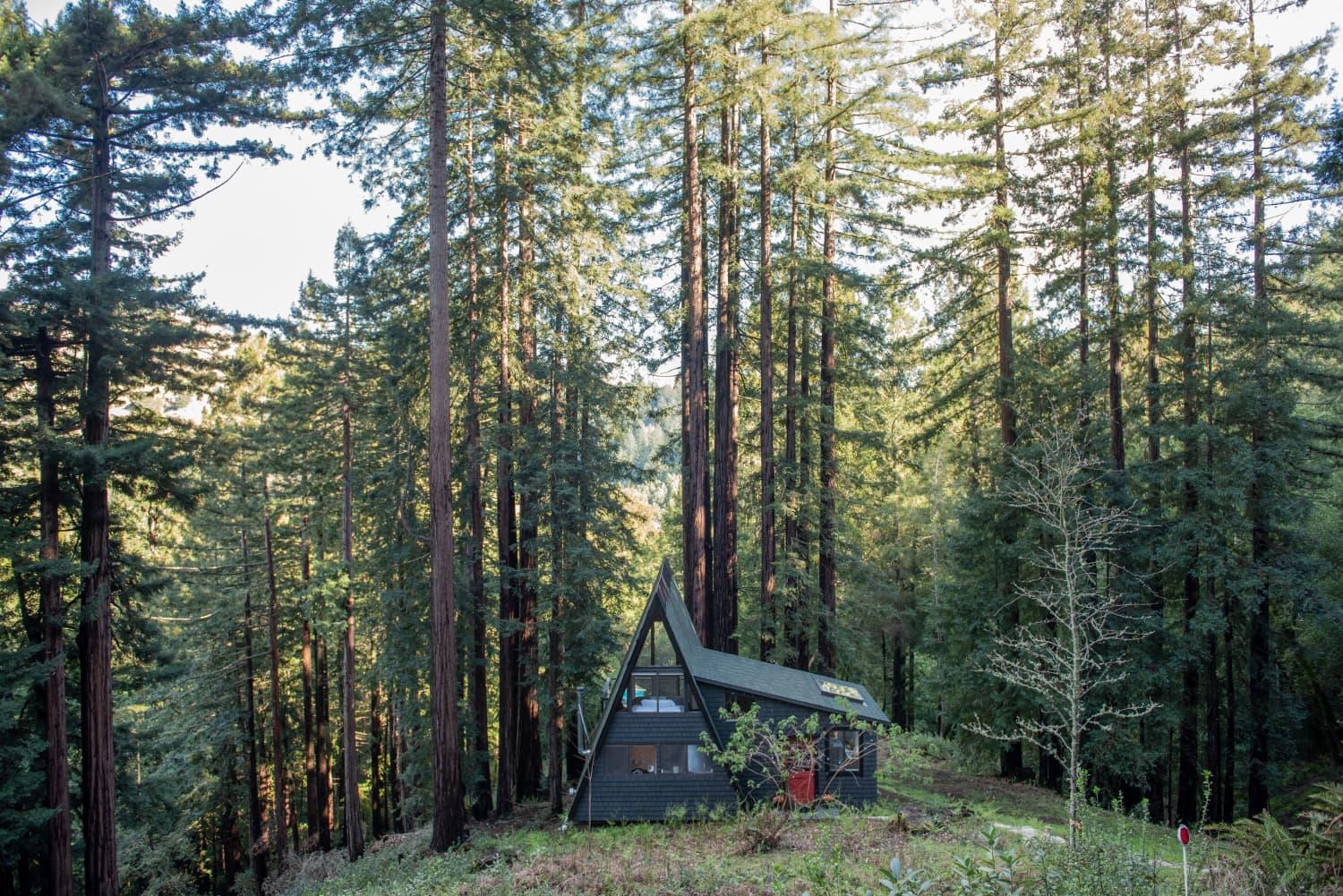 This California A-Frame Cabin Is Truly an Adorable Home in the Woods