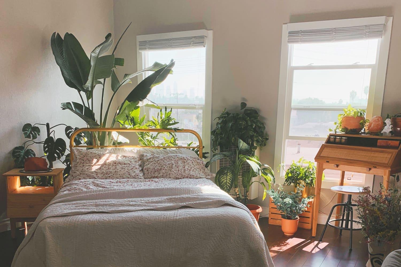 A 400-Square-Foot LA Studio Apartment Shows the Decorative Power of (Lots of) Plants