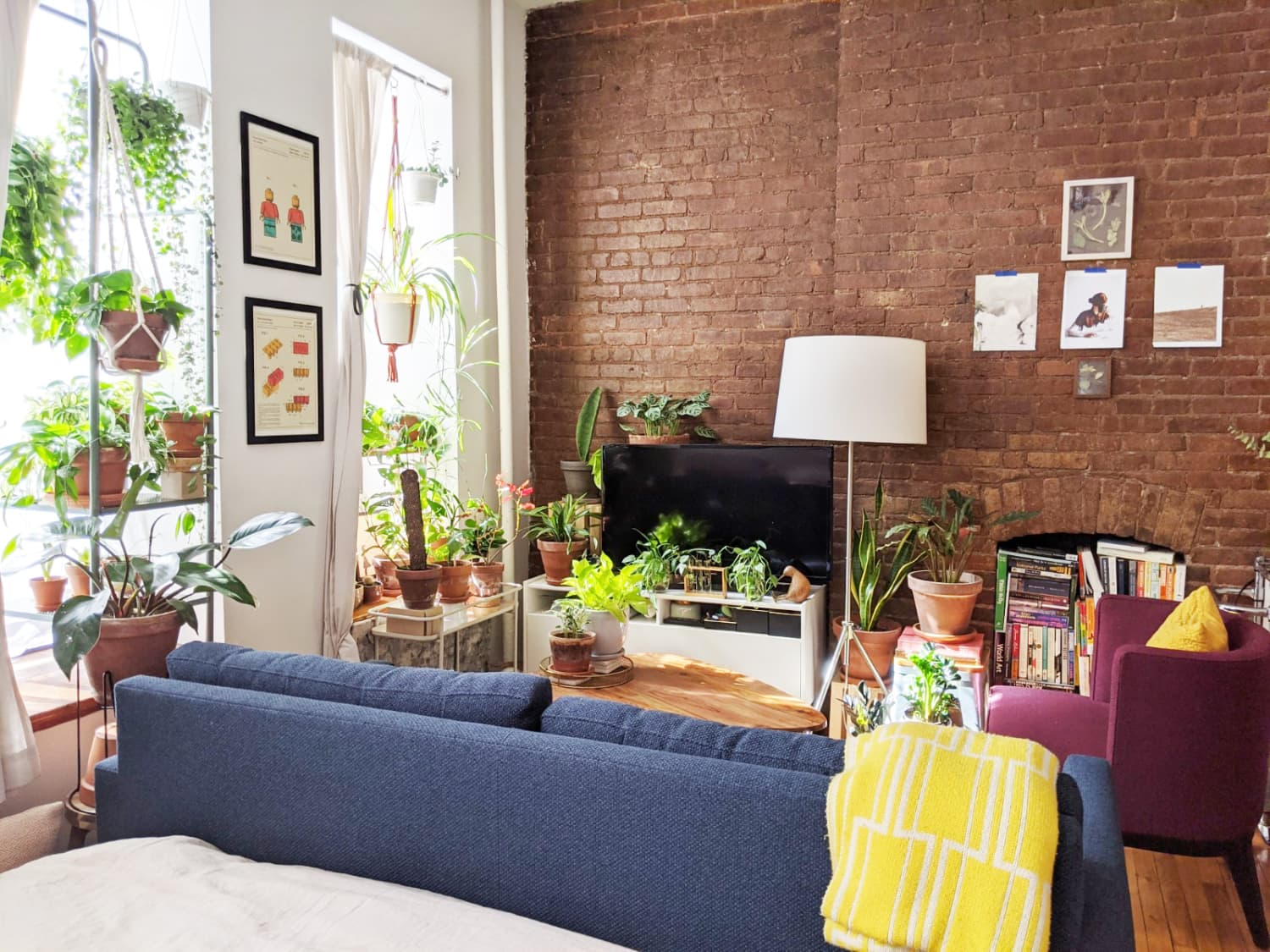 This 272-Square-Foot NYC Studio Uses an IKEA Clothes Rack in a Cute and Unique Way