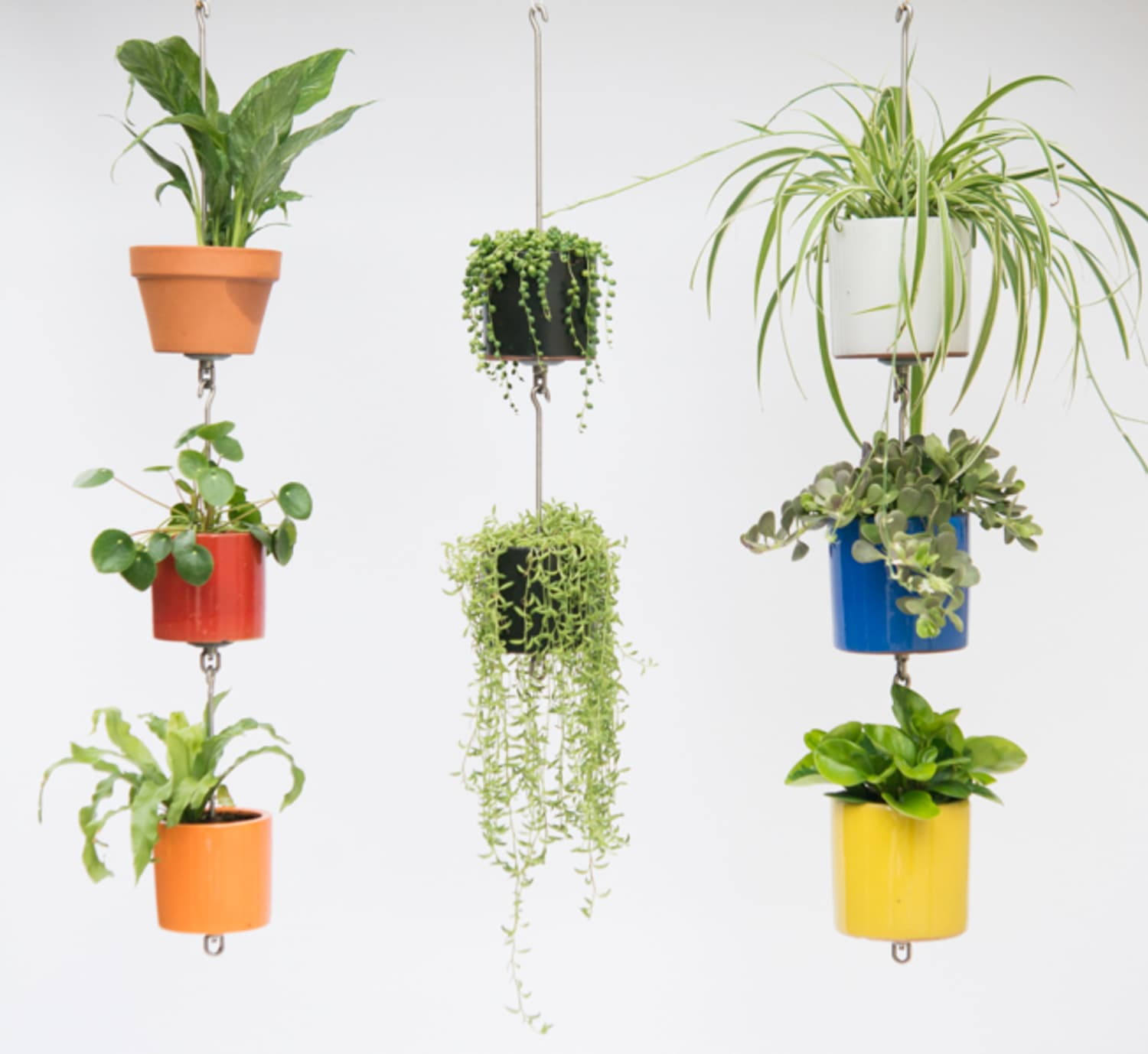 This Kit Helps Turn Your Houseplants into a Gorgeous Vertical Garden
