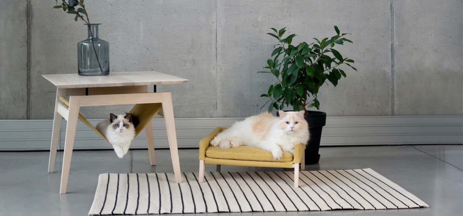 This Minimalist Pet Furniture Is So Stylish, Even Humans Will Want to Lounge in It