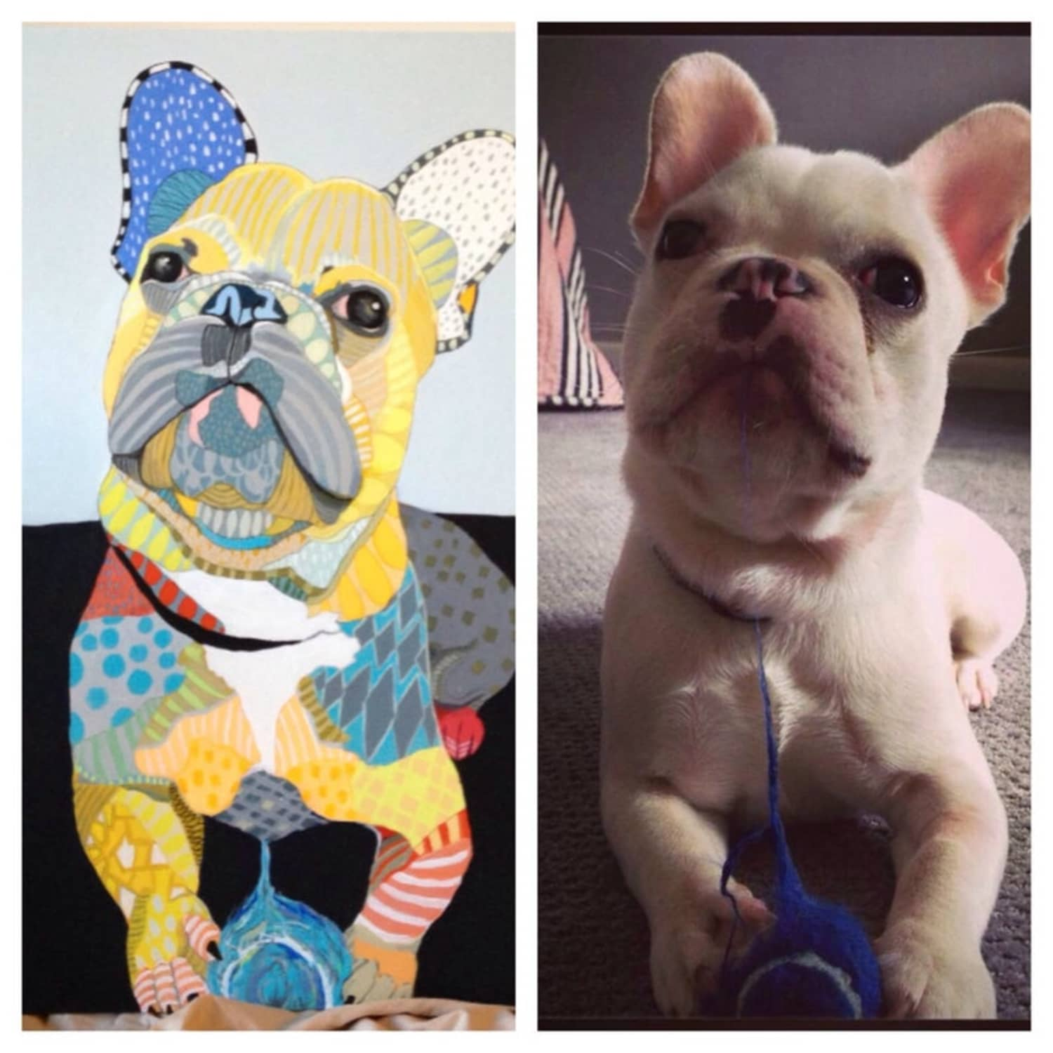 This Artist Makes Custom Pet Portraits With a Colorful Twist