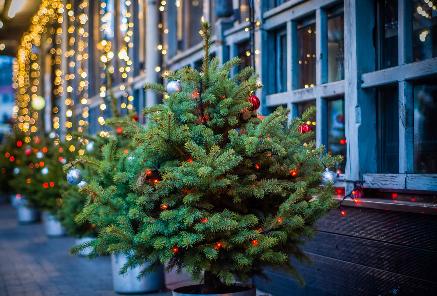 Mini Christmas Trees Are Making a Comeback This Year