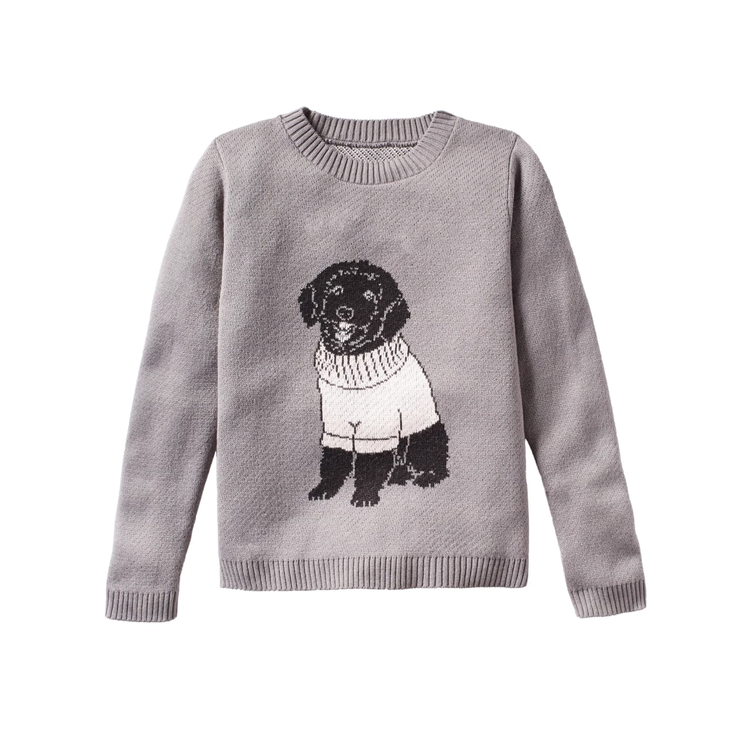 You Can Buy a Customized Sweater Featuring Your Dog Wearing a Sweater