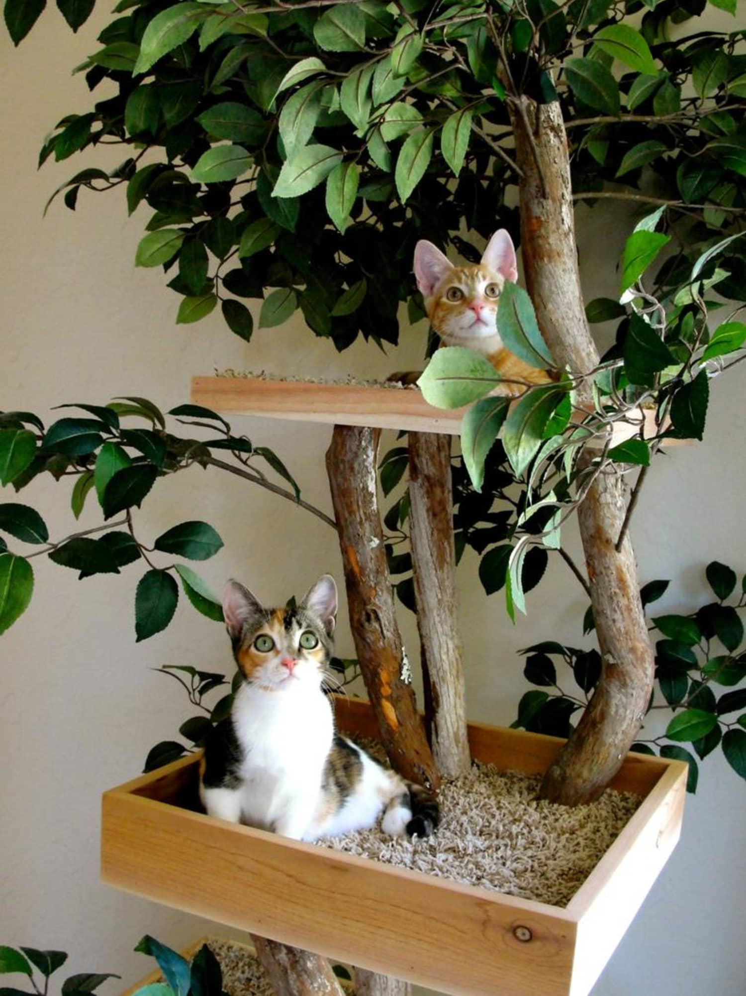 This Cat Tree Looks Like Actual Tree, So You Can Bring Nature Indoors