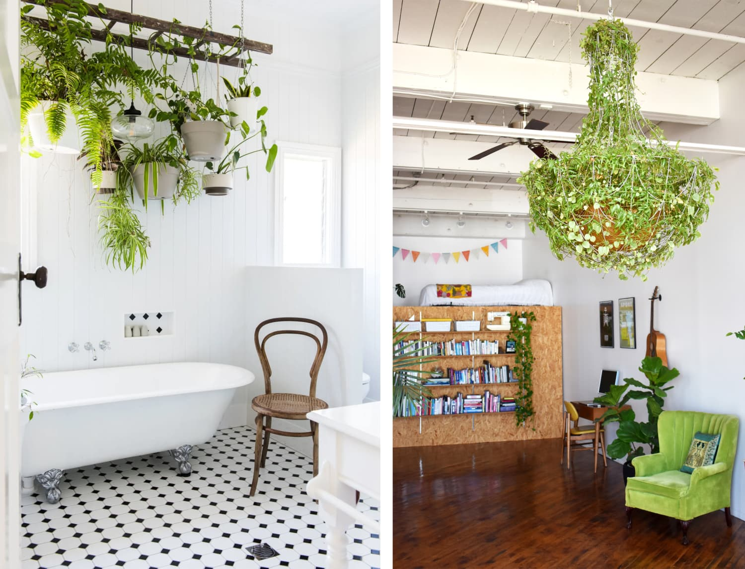 53 of the Best Plant Displaying Ideas of All Time
