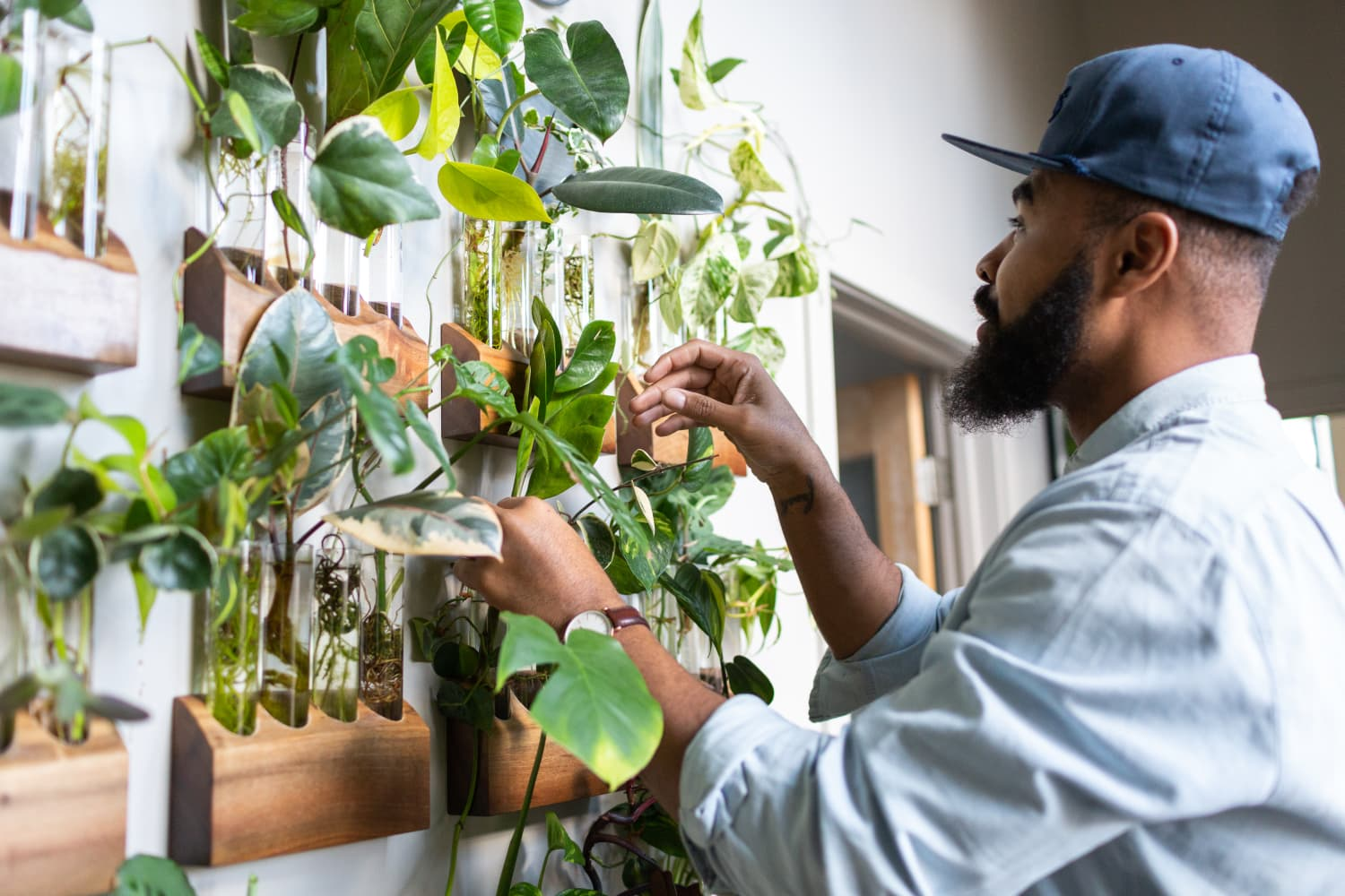 11 Propagation Stations (Starting at $6) for People Who Like Free Plants and Beautiful Decor