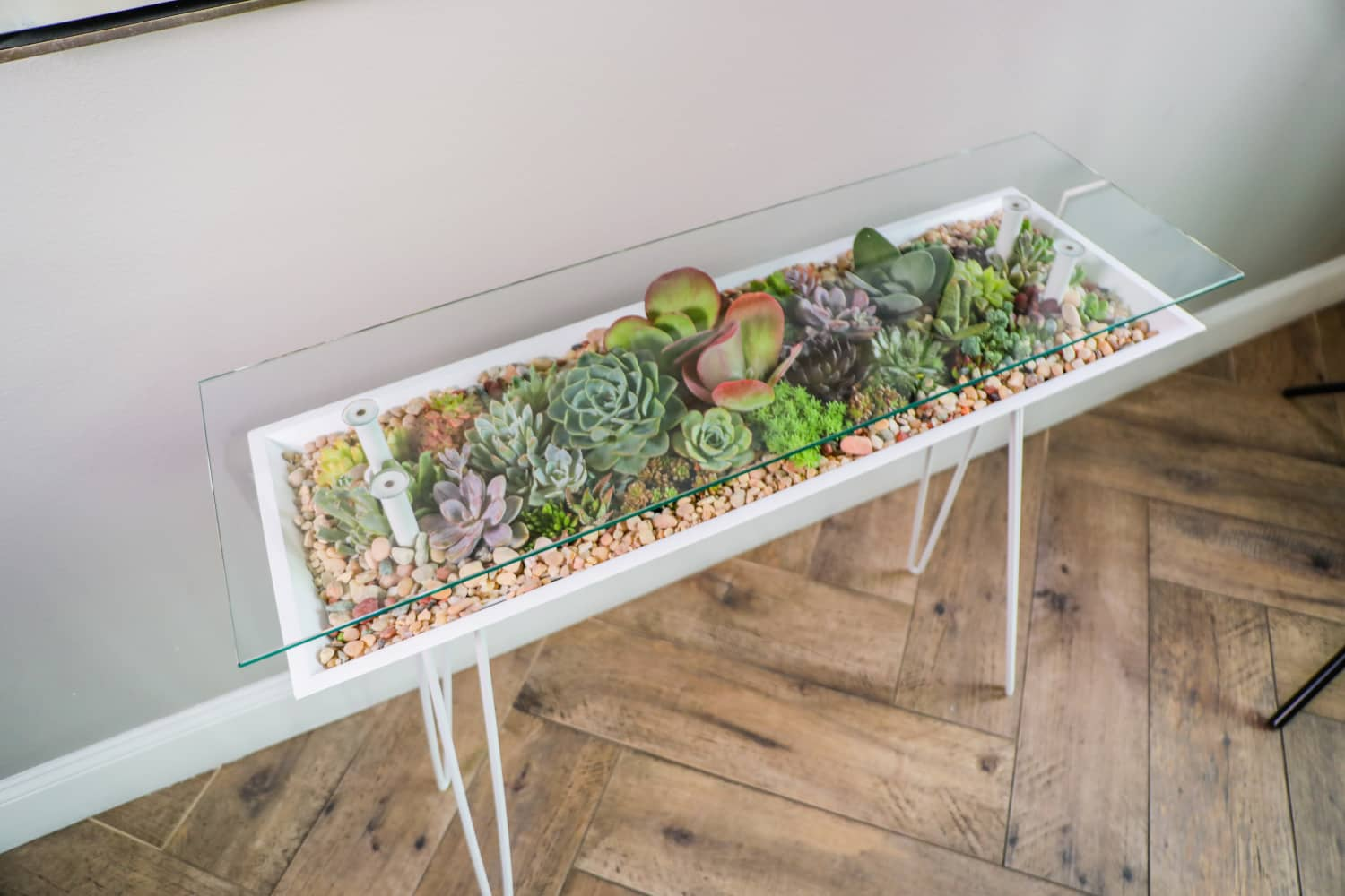 This Genius Table Also Functions as a Succulent Garden