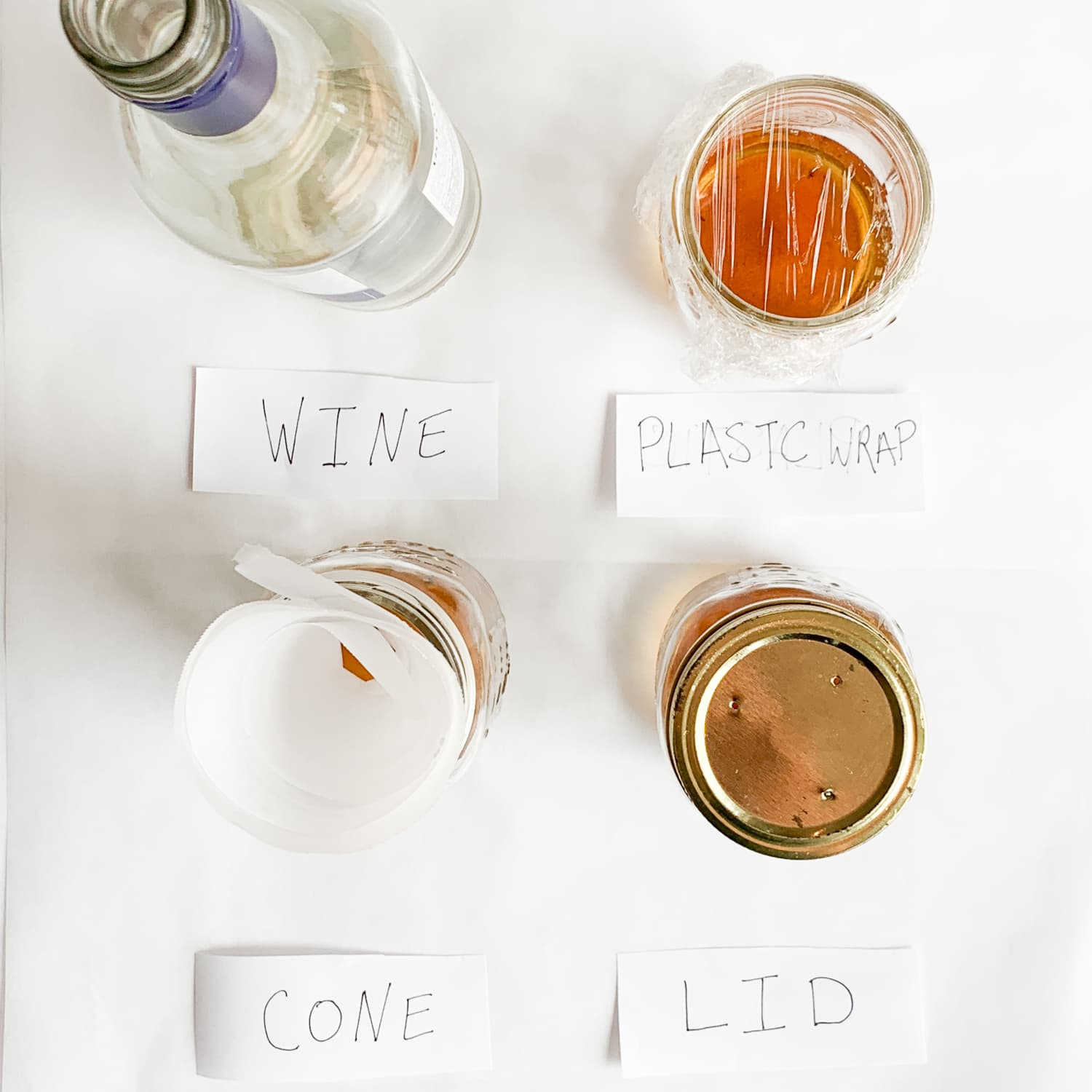 I Tested Four DIY Fruit Fly Traps and One Method Clearly Worked the Best