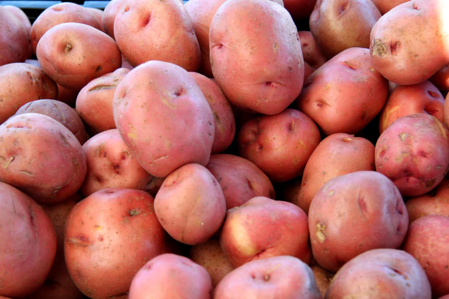 Potatoes, Lemons, Limes, and Oranges Recalled in Several States Over Potential Listeria Contamination