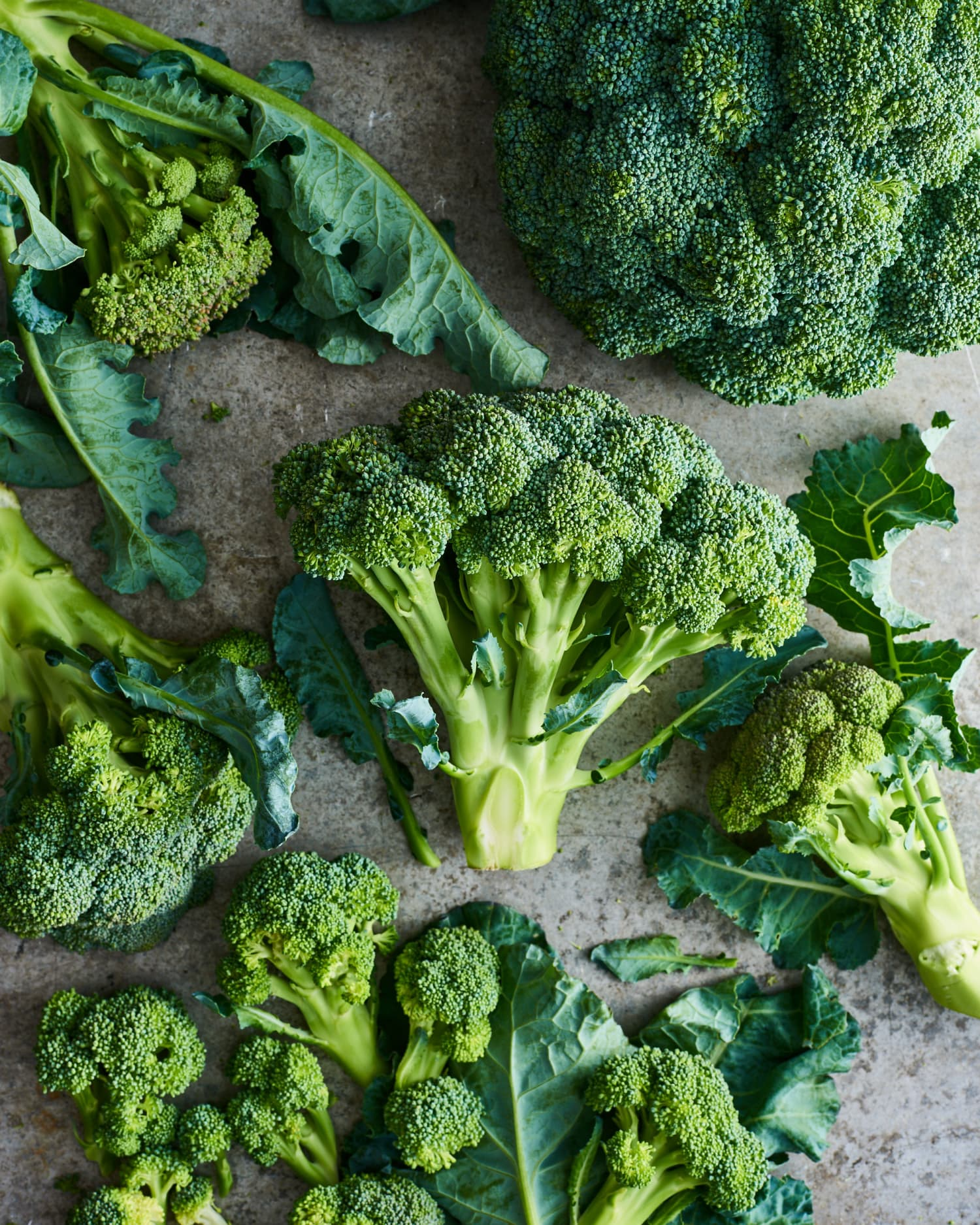 Everything You Need to Know About Broccoli Basics